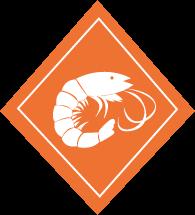 picto-crevette-viviers-de-sion